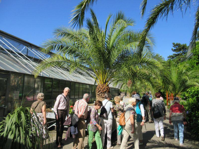 Freunde Und Förderer Des Botanischen Gartens Rombergpark Ev